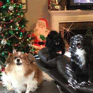 3kidschristmas2016